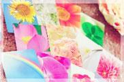 誕生花カード